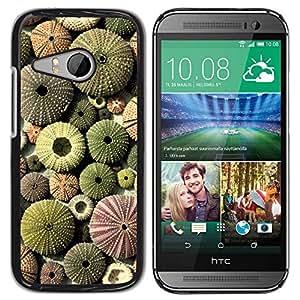 Paccase / SLIM PC / Aliminium Casa Carcasa Funda Case Cover para - Desert Pattern Plant Green Sun - HTC ONE MINI 2 / M8 MINI