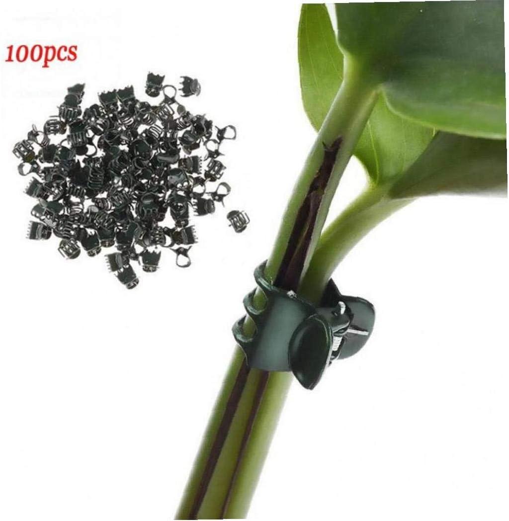 Garten-Blumen-Rebe Clips Pflanzenst/ütze Clips Zur Unterst/ützung Vorbauten Reben Wachsen Bontand 100 Pc-anlage Clips Orchideen-Clips