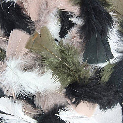 - Chenille Kraft CK-450008 Assorted Turkey Plumage Feathers, 1.7
