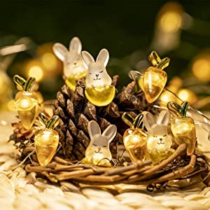 2021 Upgreaded Rabbit Bunny Carrot String Lights 10ft 40 LEDs Battery Powered with Remote Multi-Function for Bedroom Party Indoor Birthday Wedding Decor