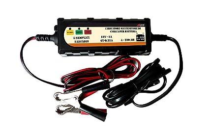 Cargador de batería para moto o coche, 12 V, mantenimiento de ...