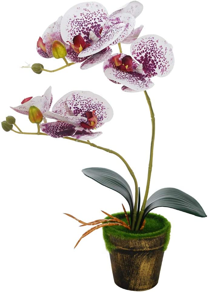Artificial Orchid Flowers with Vase Real Touch Fake Phalaenopsis Flower Arrangement Vintage Bonsai for Indoor Outdoor Wedding Home Office Decoration (Purple)