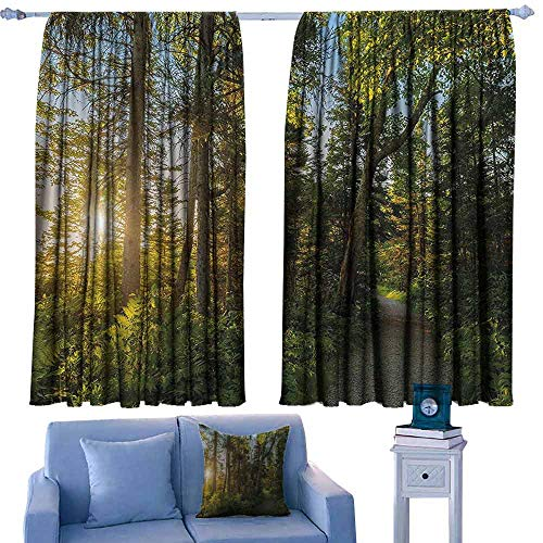 Mannwarehouse Durable Curtain Landscape National Park in Cape Breton Highlands Canada Forest Path Trees Tranquility Photo Suitable for Bedroom Living Room Study, etc. 55