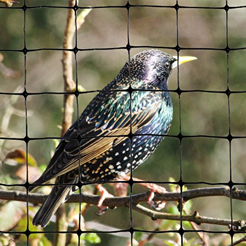 Bird-X Standard Bird Netting Ideal for Gardens and Lightweight Applications, 100' by 14'