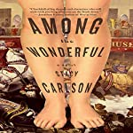 Among the Wonderful: A Novel | Stacy Carlson