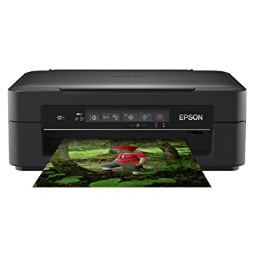 Download Drivers: Epson XP-300 Remote Printer