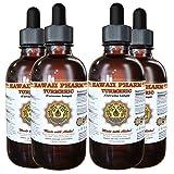 Turmeric Liquid Extract, Organic Turmeric (Curcuma Longa) Tincture, Herbal Supplement, Hawaii Pharm, Made in USA, 4x4 fl.oz