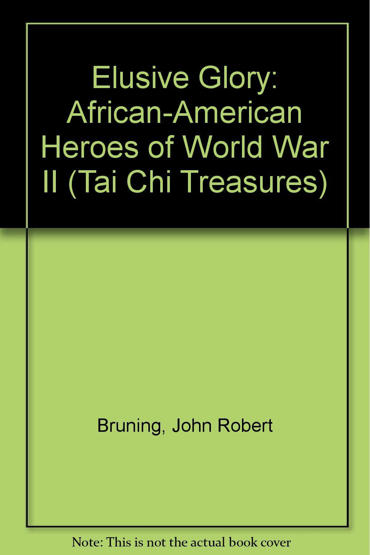Elusive Glory: African-American Heroes of World War II (Young Adult Series) PDF