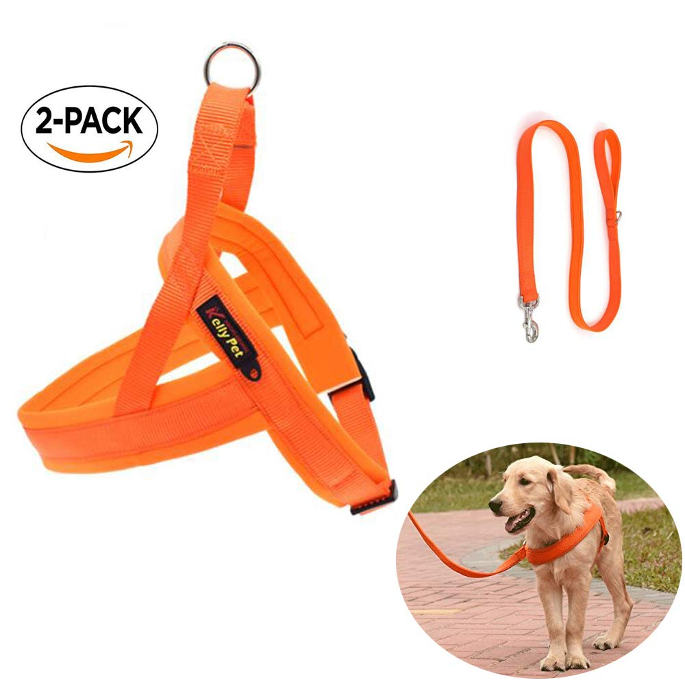 orange No Pull Comfortable Dog Harness and Leash for Big Dogs Water Proof and Fast DryingGreat for Training in rain or go Swimming