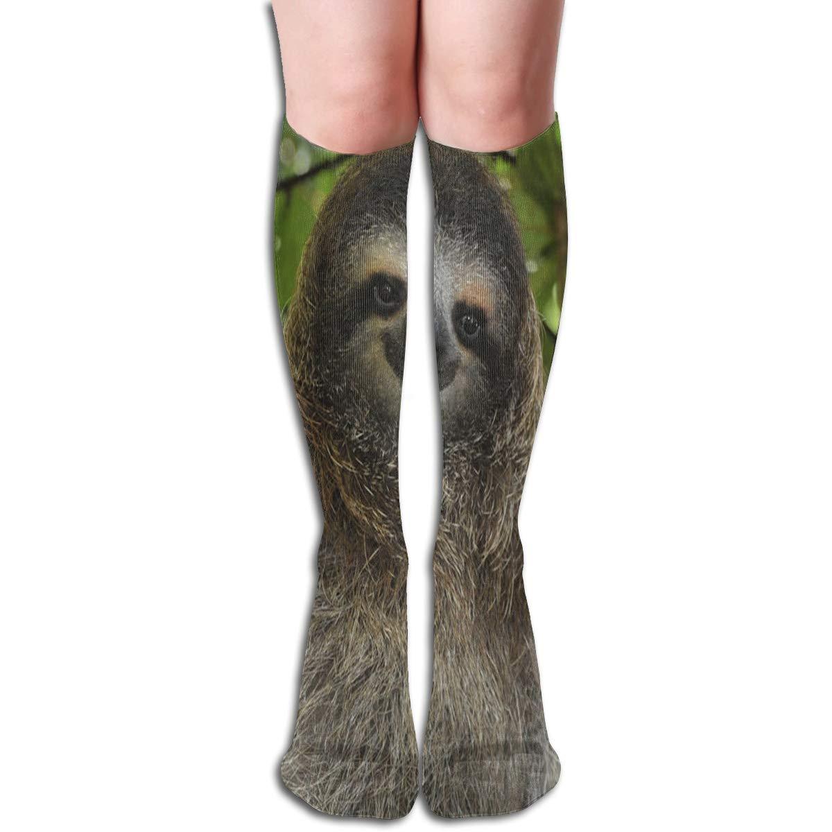 Girls Socks Over Knee Smathers Beach Palm Tree Winter Cool For Halloween