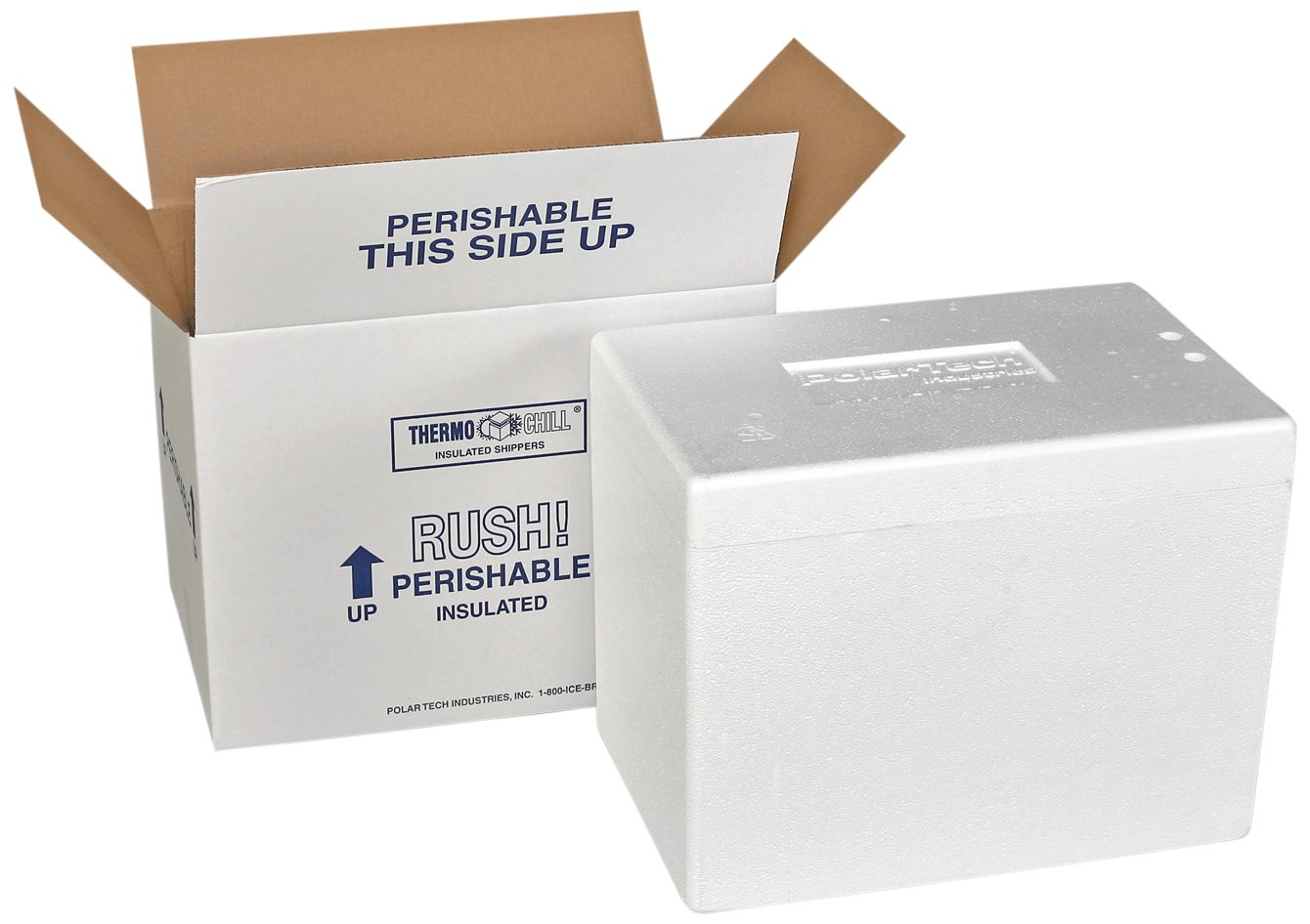 Polar Tech Thermo Chill 269/T69C Large Insulated Foam Container, 21-1/4'' Length x 15-1/2'' Width x 15-1/2'' Depth