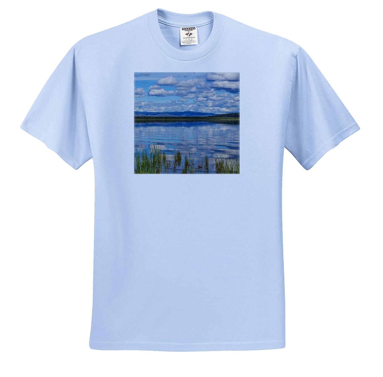 Alaska USA Scenics ts/_314432 Landscape with Quartz Lake - Adult T-Shirt XL 3dRose Danita Delimont