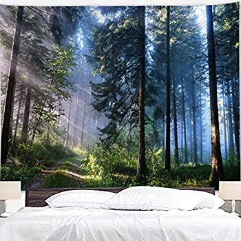 BJYHIYH Misty Forest Tapestry Wall Hanging Nature Landscape Tapestry Sunshine Through Tree Tapestries for Bedroom Living Room Dorm Decor(90.6