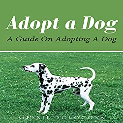 Adopt A Dog: A Guide On Adopting A Dog