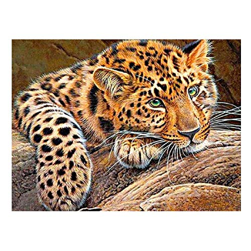 (Barlingrock Diamond Paintings Kits for Adults,5D DIY Embroidery Cross Stitch Paintings Full Square Drill Cheetah Rhinestone Painting Artwork Home Living Room Bedroom Wall Decor-30x40cm/12x16