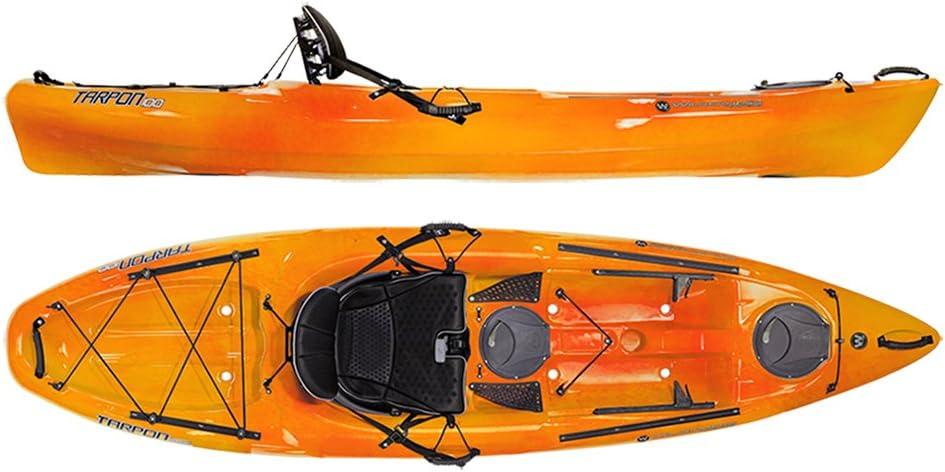 best ocean fishing kayak: Wilderness Systems Tarpon 100 Kayak