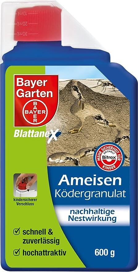 Bayer 79451938 - Control de Hormigas: Amazon.es: Jardín