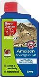 Bayer 79451938 - Control de hormigas
