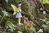 Joykick Fairy Garden Wishing Well Kit - Miniature Hand Painted Figurine Statues with Accessories - Set of 5pcs for Your House or Lawn Decor