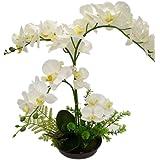 LianLe Orchidée de Papillon Fleur Artificielles de Pot Decoration de Maison Bureau,blanc