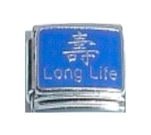 Long Life Chinese Symbol Good Luck Lucky Enamel Italian Charm 9mm
