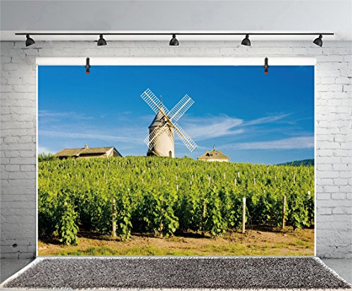 France Red Wine Rhone - Leyiyi 5x3ft Photography Background Vineyard Backdrop France Grape Plantation Happy Birthday Farmland Crops Agriculture Windmill Paris Tourism Red Wine Baby Shower Photo Portrait Vinyl Studio Prop