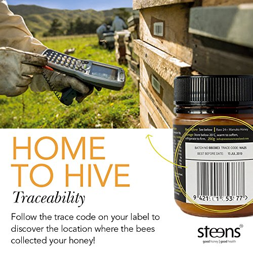 Steens Manuka Honey UMF 15 (MGO 514) 17.6 Ounce jar | Pure Raw Unpasteurized Honey From New Zealand NZ | Traceability Code on Each Label by Steens (Image #7)