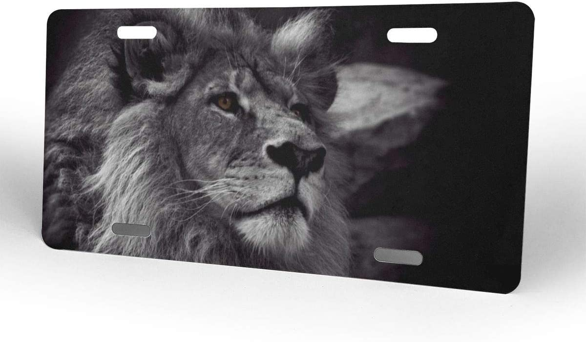 ADOUGEDU Black Lion Aluminum Novelty Auto Car Tag Vanity Plates Gift for Men Women 6x14 Inch Front License Plate Cover Decorative License Plates for Car