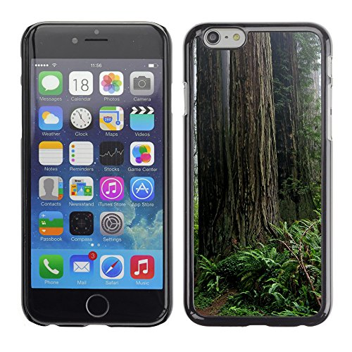 Premio Sottile Slim Cassa Custodia Case Cover Shell // V00002623 Forest path // Apple iPhone 6 6S 6G PLUS 5.5""