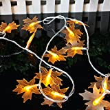 Get into the spirit of Fall!Nothing quite says Fall like leaves changing colors. What better way to capture the Autumn season than with a colorful lighted Fall garland on your mantelpiece, table, or across your piano? Beautiful Colors Warm Up...