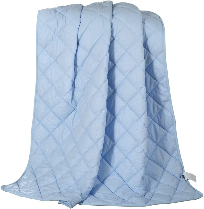 NATURETY Thin Comforter for Summer,Bed Quilts Set Light Duvet Insert (Full/Queen, Blue)