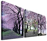 Mon Art 12In x 12In x3 Pics Cherry Blossom Trees Large Wall Art Canvas Picture Artwork Wall Decor Wall Art Canvas Home Decor Decoration Bedroom Living Room Set of 3 Stretched and Framed Ready to Hang