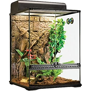 Amazon Com Exo Terra Glass Terrarium Mayan Small Tall Pet Supplies