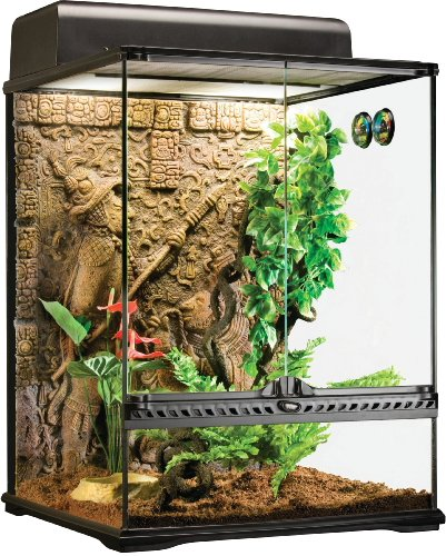 (Exo Terra Glass Terrarium Mayan, Small/Tall)