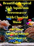 Beautiful tropical fish aquarium screensaver with classical music 10 hour ambient sounds screensaver video