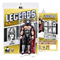 Legends of Professional Wrestling Series Action Figures: The Demon [KISS]