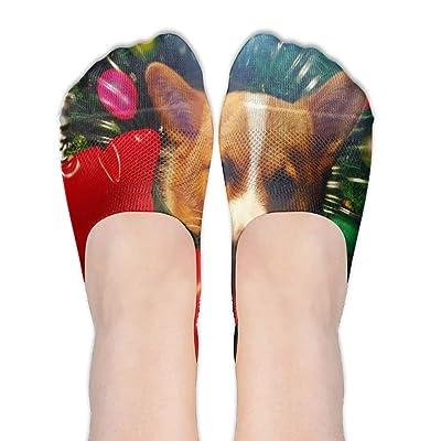 quanzhouxuhuixiefu Womens Christmas-Corgi No Show Socks Thin Low Cut Casual Socks For Gym Hiking Running Sports Non Slip Flat Boat Line Socks 50CM: Deportes y aire libre