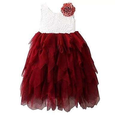 9d913b8cc Amazon.com  Miss Bei Lace Back Flower Girl Dress