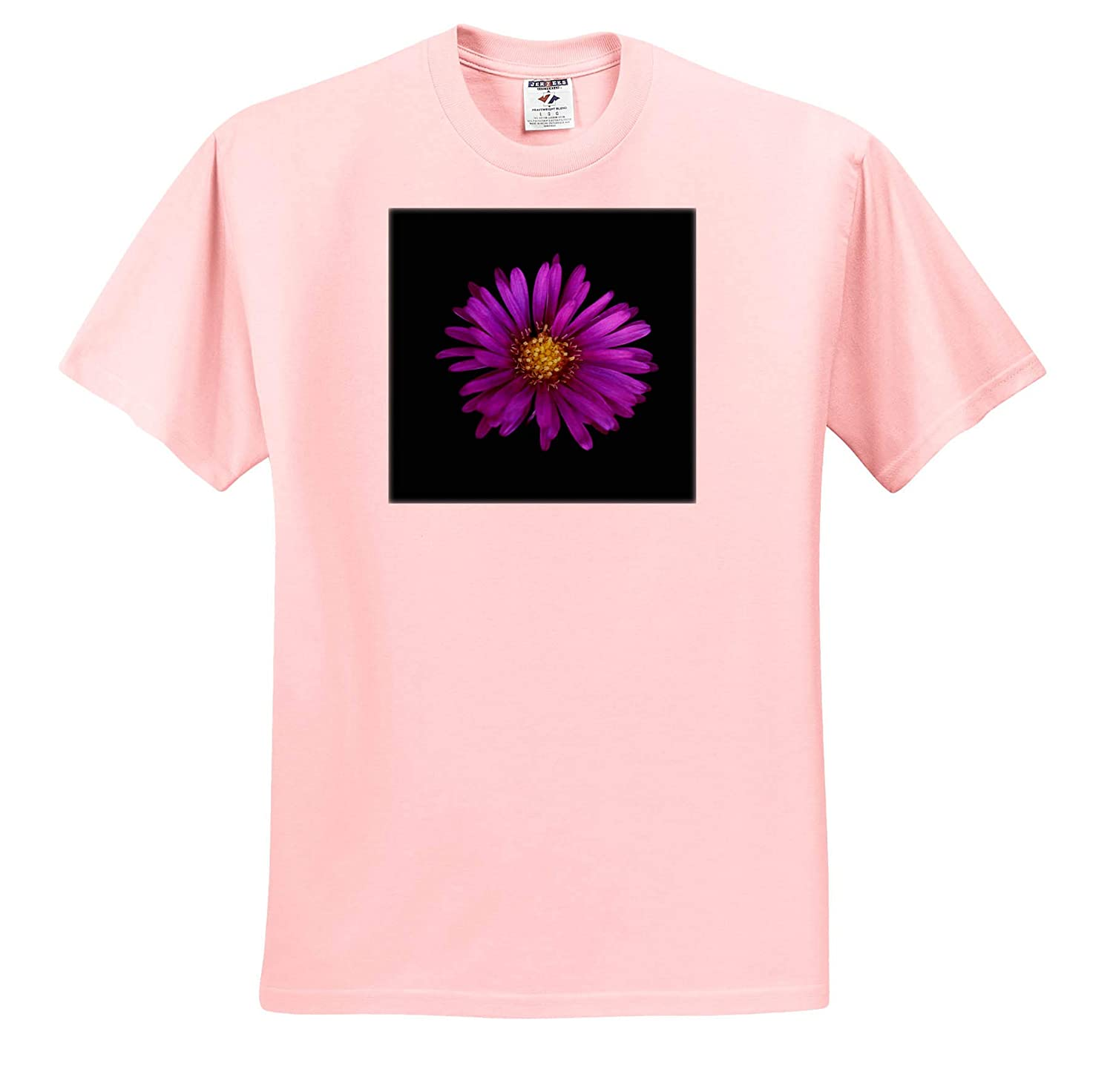 ts/_320118 Macro Photograph of a Purple Aster on Black Background Flowers - Adult T-Shirt XL 3dRose Stamp City