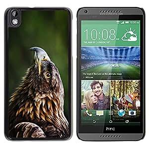 Be Good Phone Accessory // Dura Cáscara cubierta Protectora Caso Carcasa Funda de Protección para HTC DESIRE 816 // Beautiful Eagle Hawk