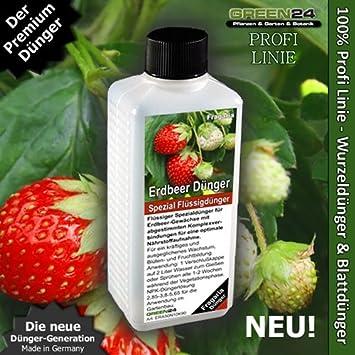 Erdbeer-dünger High-tech Spezial Dünger Für Erdbeer-pflanzen ... Dunger Fur Den Garten Pflanzen Kuche