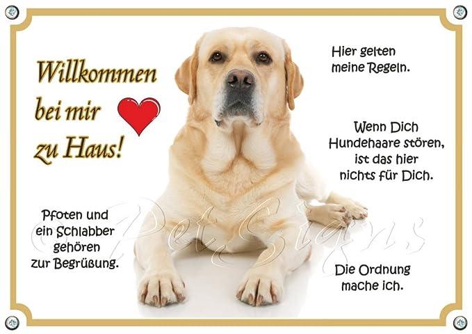 Cartel de perros - Labrador Retriever - Bienvenido a mi a ...