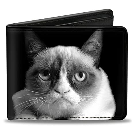 Gruñón Cat – closeup Face On negro sombras Bi-fold cartera