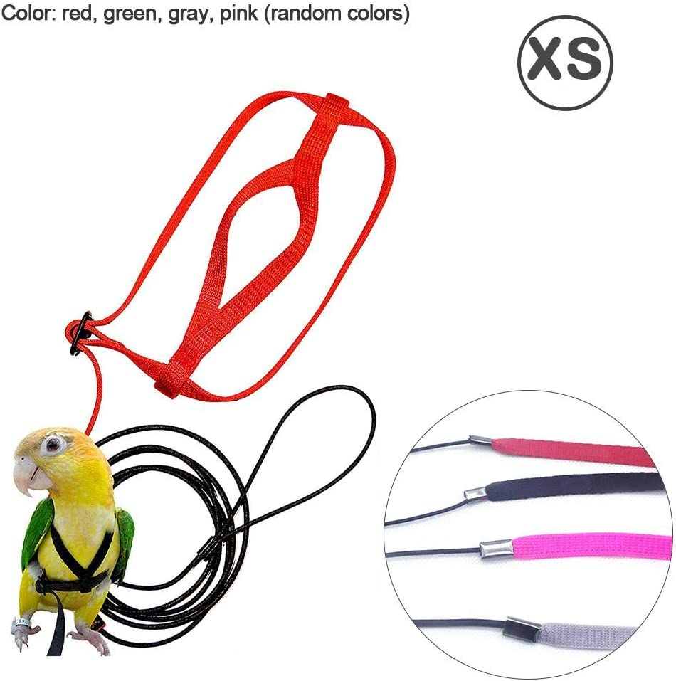 haptern Parrot Harness and Leash Flying Anti-bite Traction Rope Pet Bird Training Outdoor Carrying,Random Color parsimonious