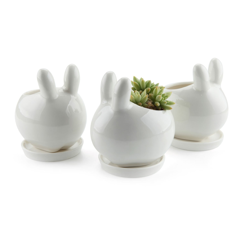 bdc7c0566 Amazon.com   T4U Ceramic Pot White