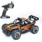Offroad RTR Rc Electric Cars, 2wd Rc Dune Desert Buggy, Rechargeable 2.4 Radio Remote