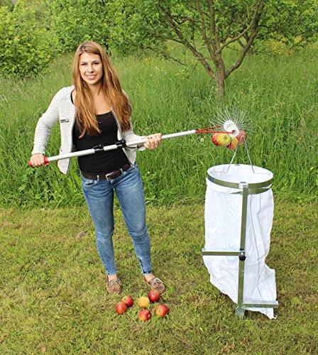 Apfel-Sackhalter SACKI mit Erddorn - Bag Man - der perfekte Helfer für Ihren Apfel-Sammler Roll-Blitz Made in Germany - Der Profi Sackhalter zum einfachen befüllen von Säcken mit Äpfeln, Walnüssen, Haselnüssen, Eicheln, Kastanien - super stabiler Stahl silber verzinkt