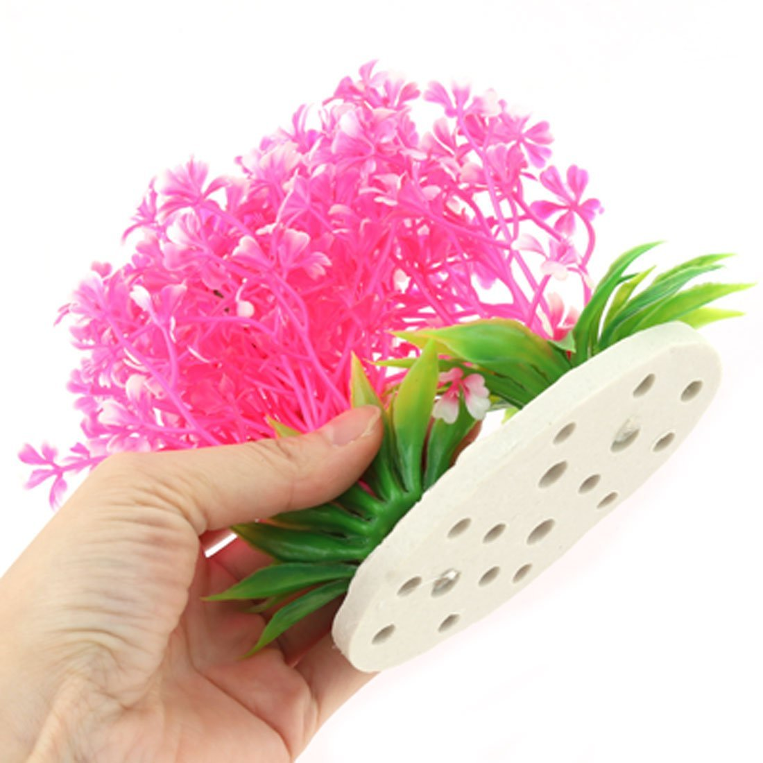 Amazon.com : eDealMax cerámica plástico Base acuario Artificial Debajo del agua Hierba rosa planta de decoración : Pet Supplies