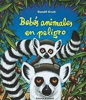 Bebés Animales En Peligro (Albumes