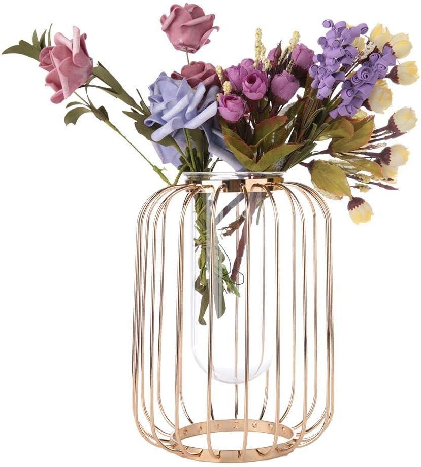 Wifehelper Vase en Fer forg/é Style Nordique en Forme de Lanterne en Forme de Lanterne en Verre pour la Maison ou Le Bureau champagne